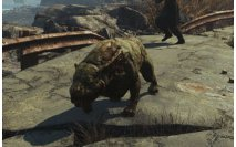 Fallout 4: Far Harbor - Guard Dog Companions Location (Mishka, Gracie, Duke)