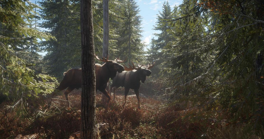 The Hunter Call Of The Wild Tierliste