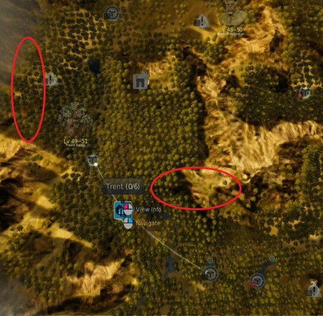 Black Desert Online - Horse Spots