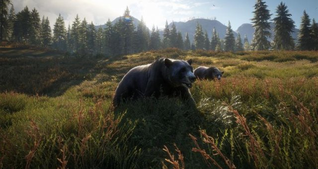 The Hunter: Call of the Wild - Medved Taiga Map
