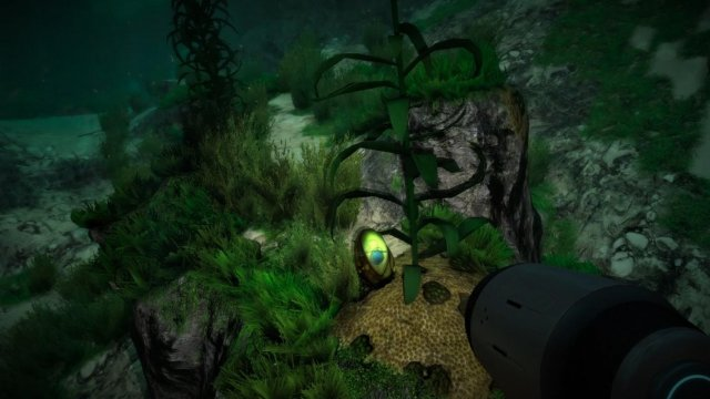 Subnautica - The Stalker (Fanmade Documentation)