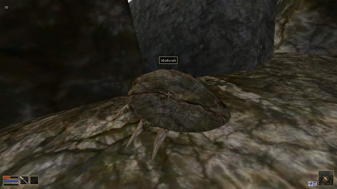 The Elder Scrolls III: Morrowind - How to Make a Lot Gold
