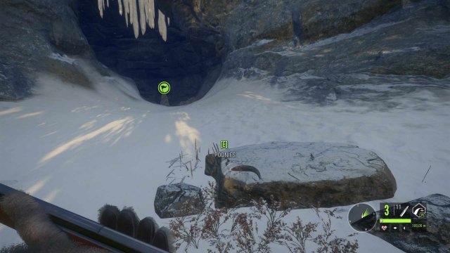 The Hunter: Call of the Wild - Secret Finds (Medved Taiga National Park)