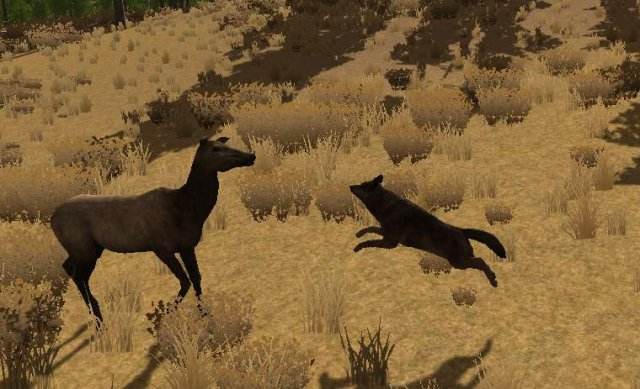 WolfQuest - How to Kill a Bull Elk (For Beginners)