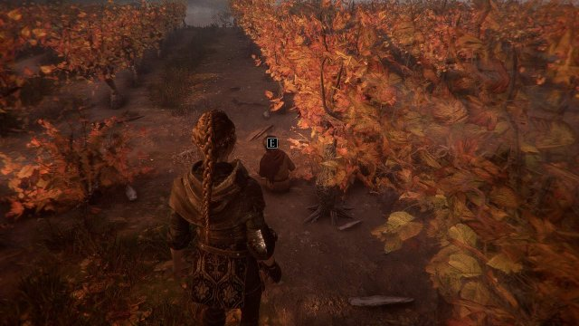 A Plague Tale: Innocence - Collectible Guide