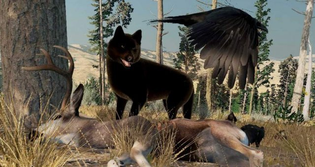 WolfQuest: Anniversary Edition - Map Locations (Point of Interest)